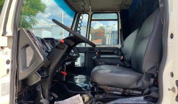 Ford Cargo 1317 full